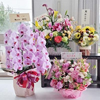 25周年お花